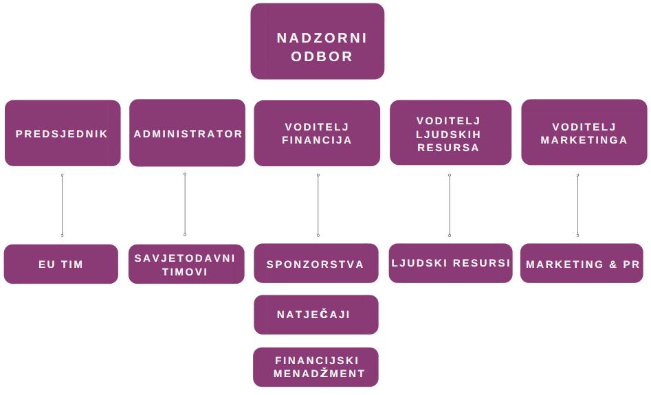 Organizacijska struktura-Ekonomska klinika
